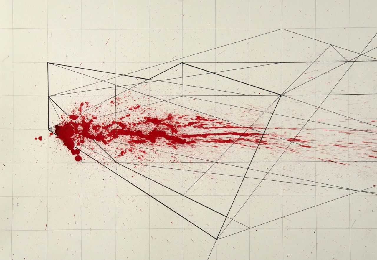 Gyula Sagi contemporary art drawing. Velocity analysis. Ink on paper.